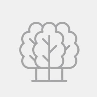 Garten & Baumpflege